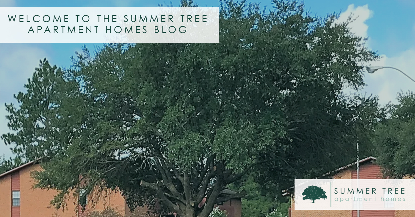 Welcome to the Summer Tree Apartment Homes Blog
