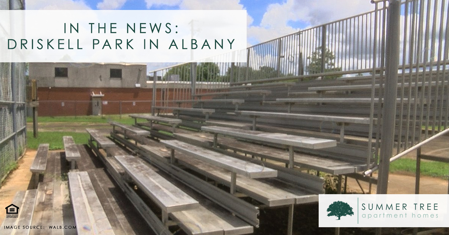 In the News: Driskell Park in Albany